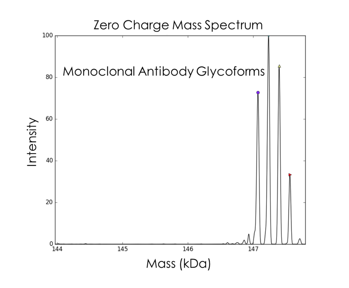 Protein analysis and characterization spectrometer chart - Intact analysis of glycoforms and protein alone, heavy and light chain